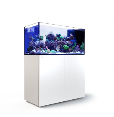 Red Sea REEFER Peninsula 500 (White)