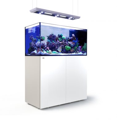Red Sea REEFER Peninsula 500 Deluxe (White)
