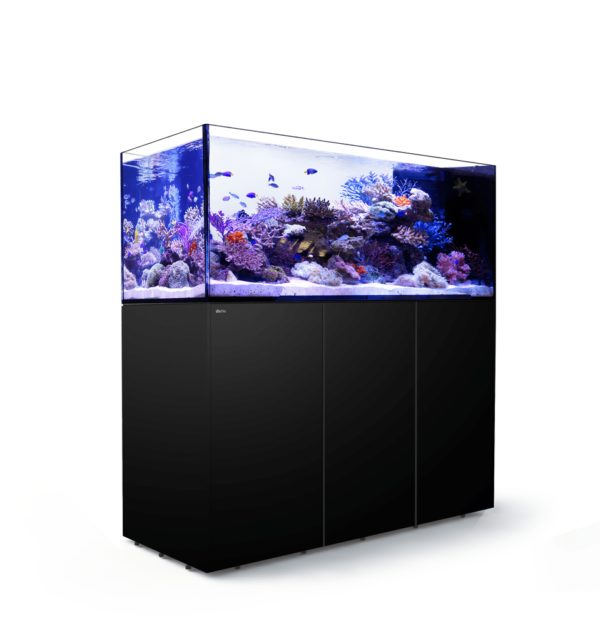 Red Sea REEFER Peninsula 650 (Black)
