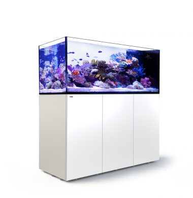 Red Sea REEFER Peninsula 650 (White)
