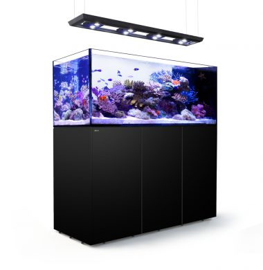 Red Sea REEFER Peninsula 650 Deluxe (Black)