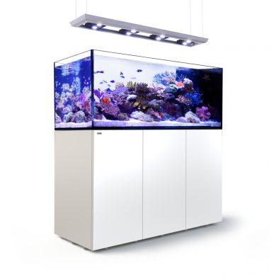 Red Sea REEFER Peninsula 650 Deluxe (White)