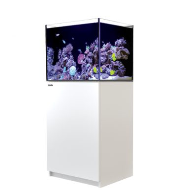 Red Sea REEFER 170 (White)