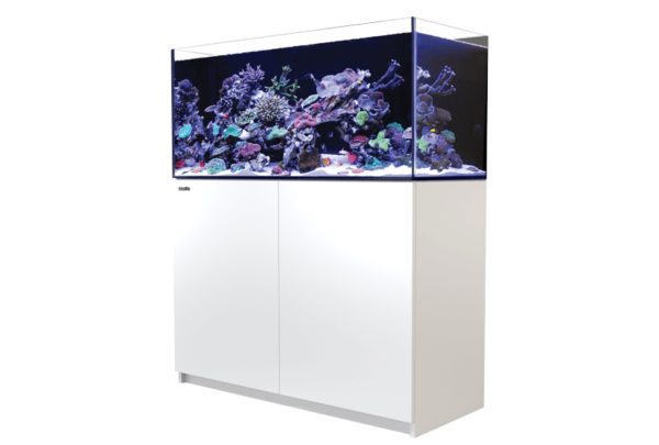 Red Sea REEFER 350 (White)
