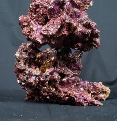 Real Reef Rock 1kg approx
