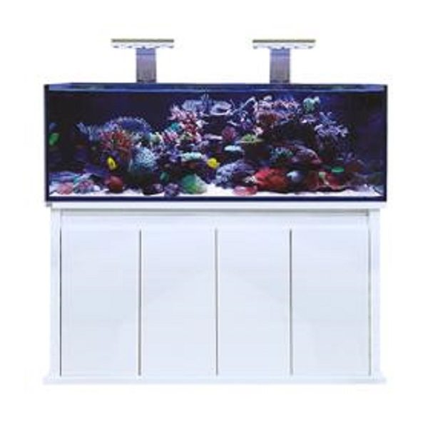 Pro Reef 1500s (White) Front