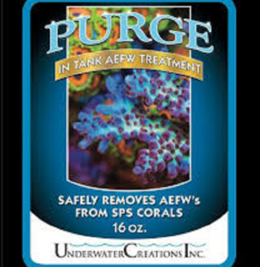 Purge 16oz In-Tank Acropora Eating Flatworm Treatment