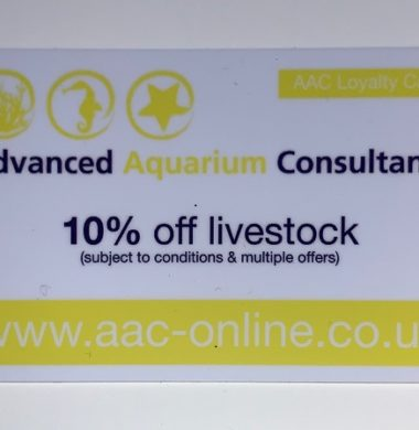 AAC In-Store Livestock Discount Card (Valid from Nov. '19 to Nov. '20)