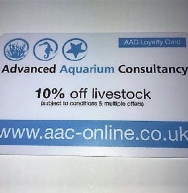 AAC In-Store Livestock Discount Card (Valid from Nov. '18 to Nov. '19)