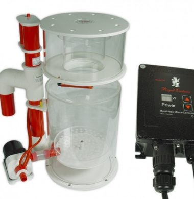 Royal Exclusiv Bubble King DeLuxe 300 Internal With RD3 DC Protein Skimmer