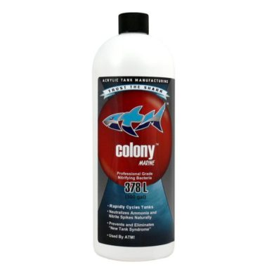 ATM Colony Saltwater Bacteria 32oz
